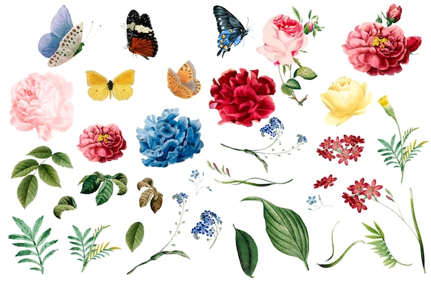 Marcos Con Flores Y Mariposas Fotos y Vectores gratis