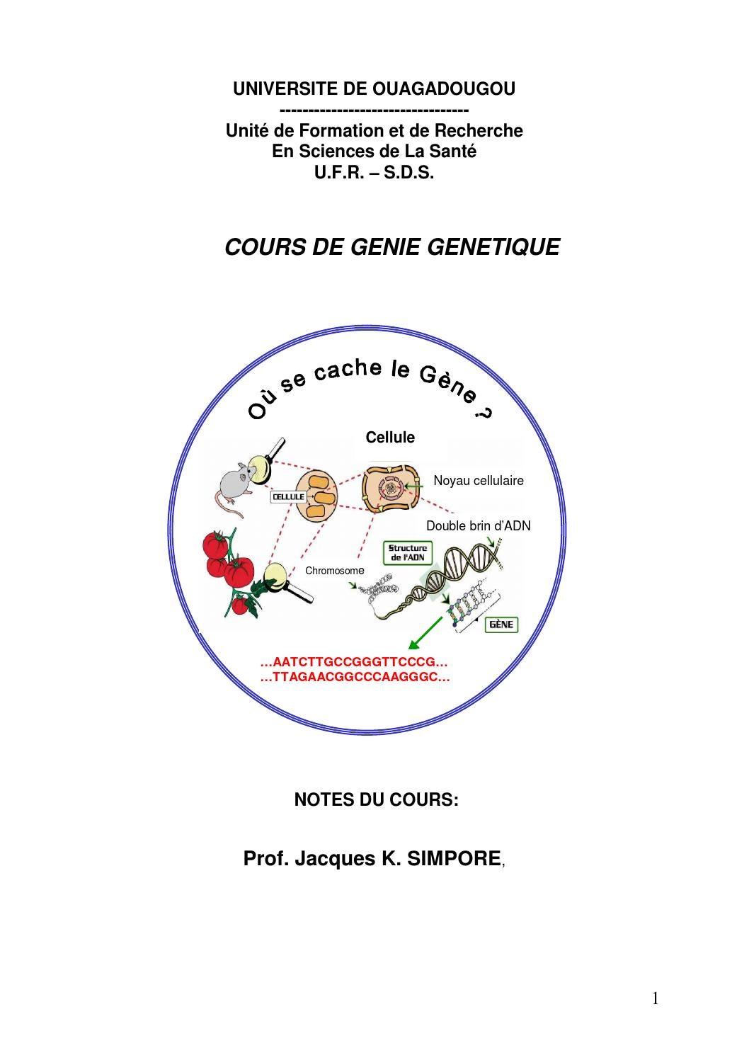 Cellule A Grain Exterieur Genie Genetique By Mouloud Taouzinet Issuu