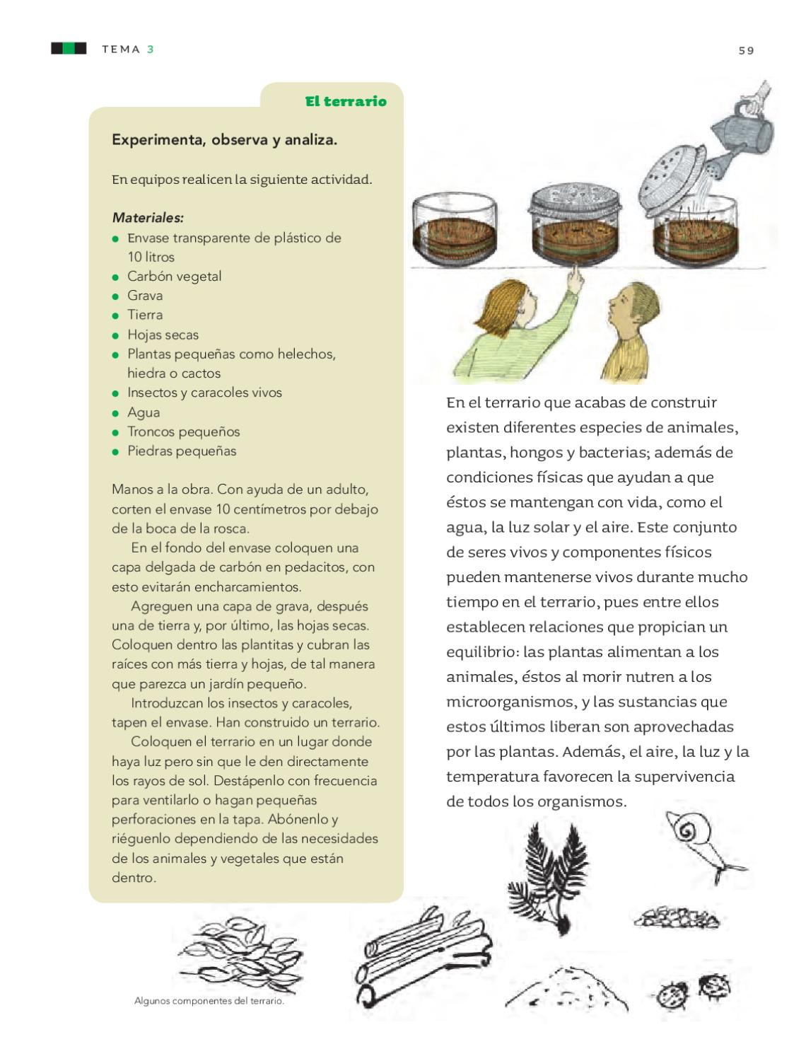 Libros Vivos Los Metales Ciencias Naturales 4to Grado By Rarámuri Issuu