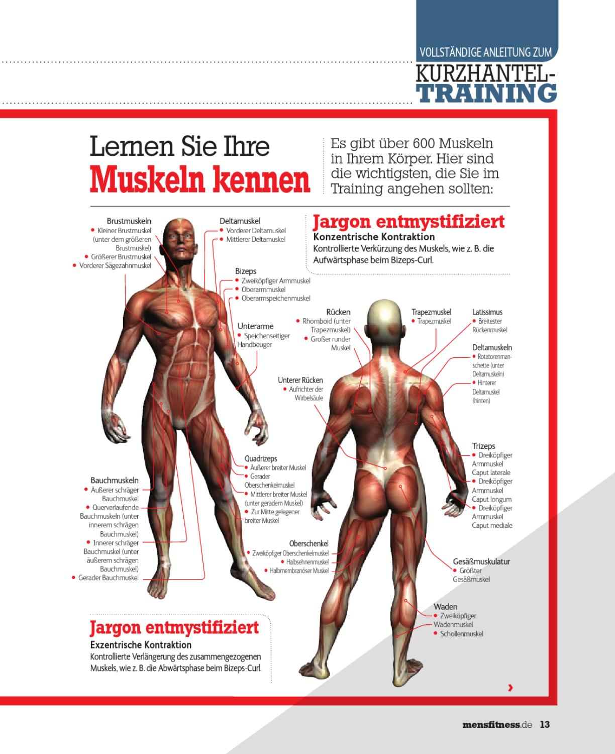 Muskel Training Men S Fitness Training Guide By Ultimate Guide Media Issuu