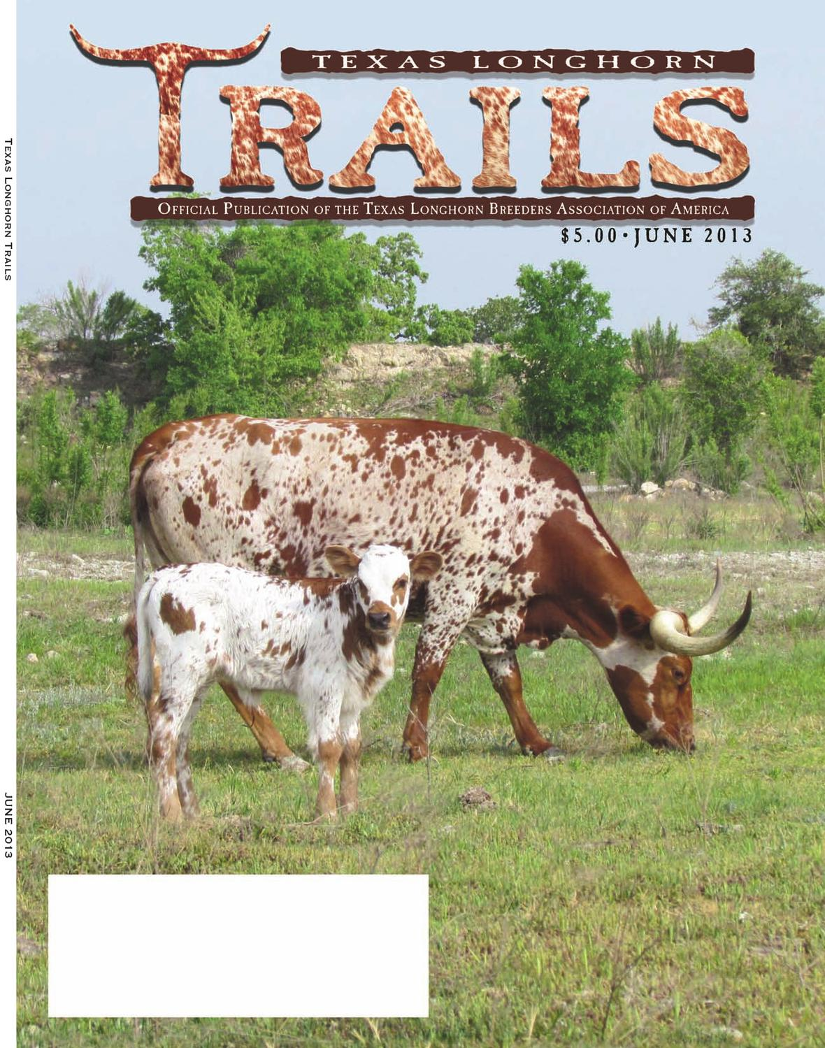 108 Camino Barranca El Paso Tx Texas Longhorn Trails By Texas Longhorn Trails Magazine