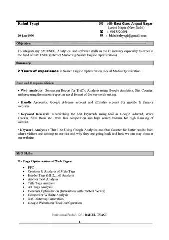 Best Resume Makers In Delhi Contemporary - The Best Curriculum Vitae ...