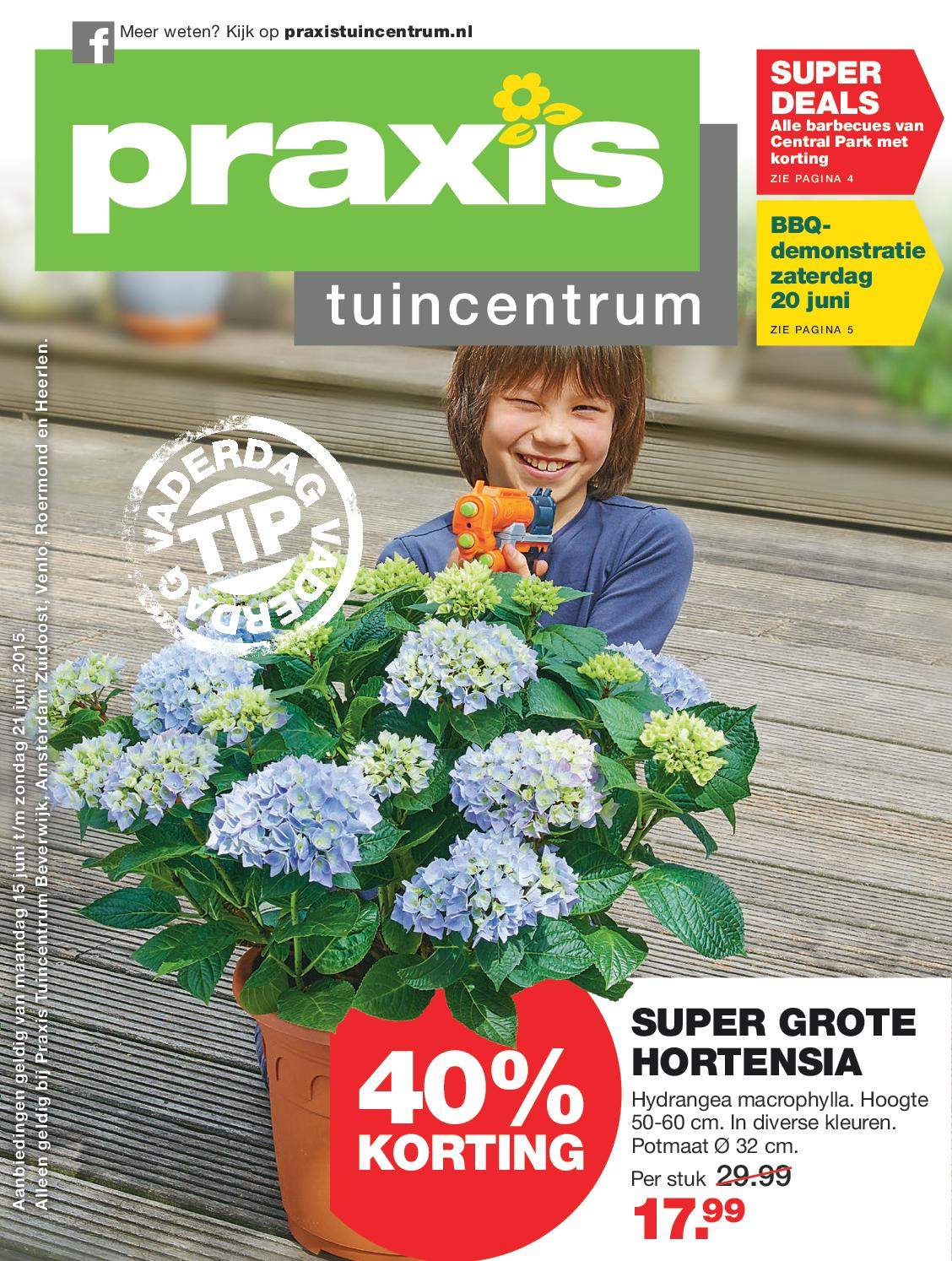 Hortensia Aanbieding Praxis Praxis Tuin Folder Week 25 2015 By Online Folders Issuu