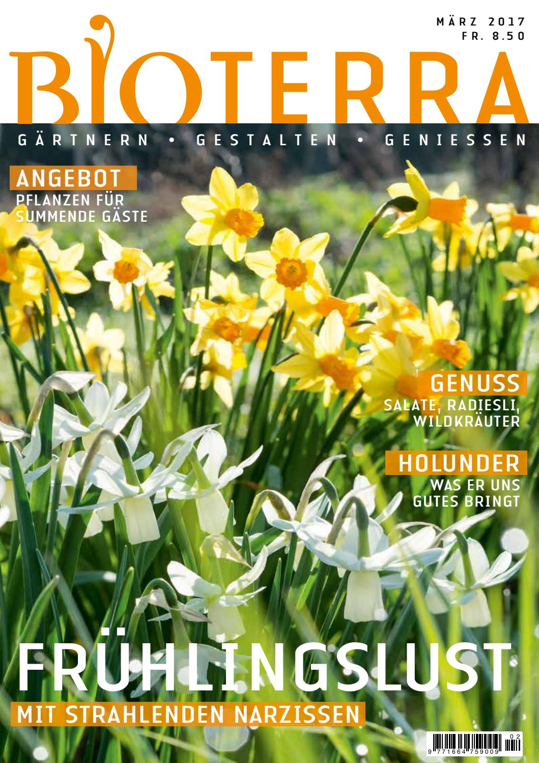 Tomaten Pflanzen Veredelungsstelle Bioterra April 2017 By Bioterra Ch Issuu