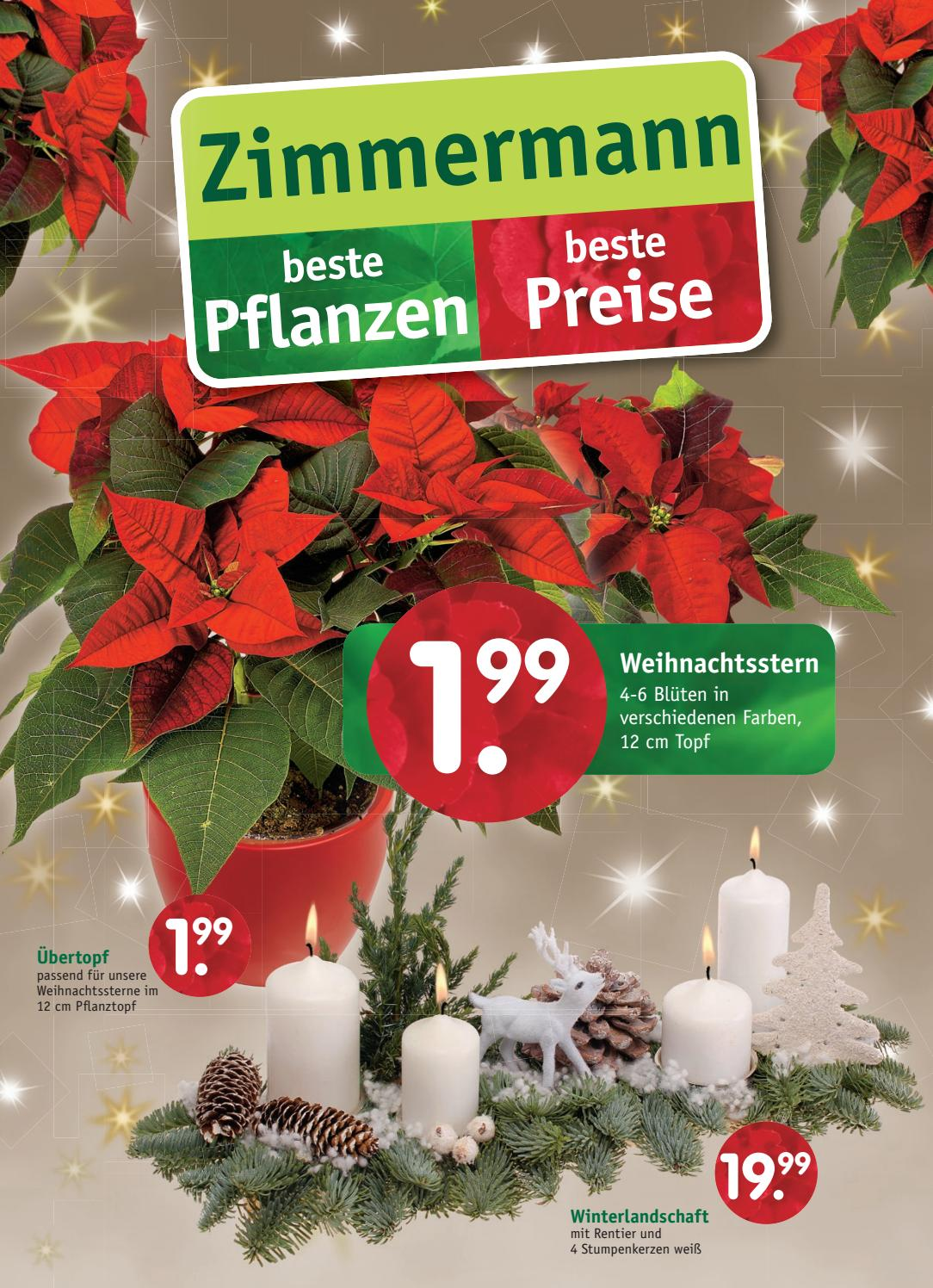Adventskranz Stumpenkerzen 12 Cm Beilage November 2 2017 Pflanzencenter Zimmermann