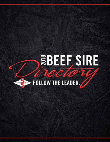 2018 Beef Sire Directory by Kim West - issuu