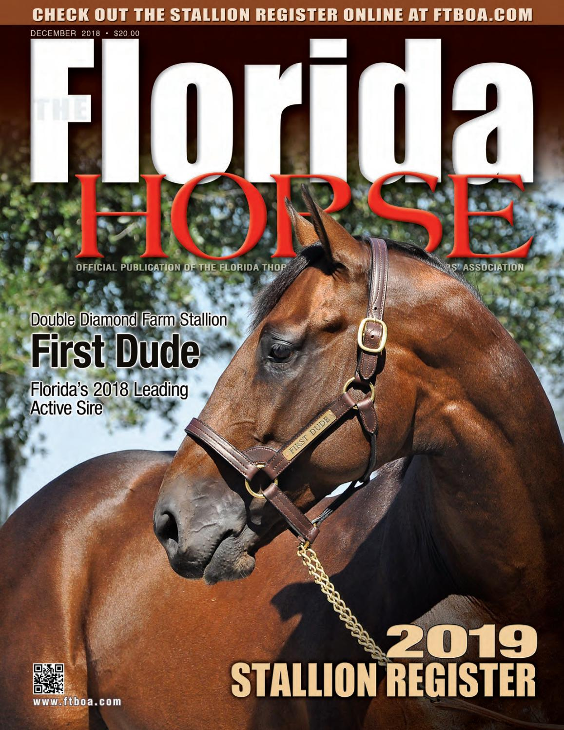 Roxy Bar Vasco Florida Horse 2019 Stallion Register By Florida Equine