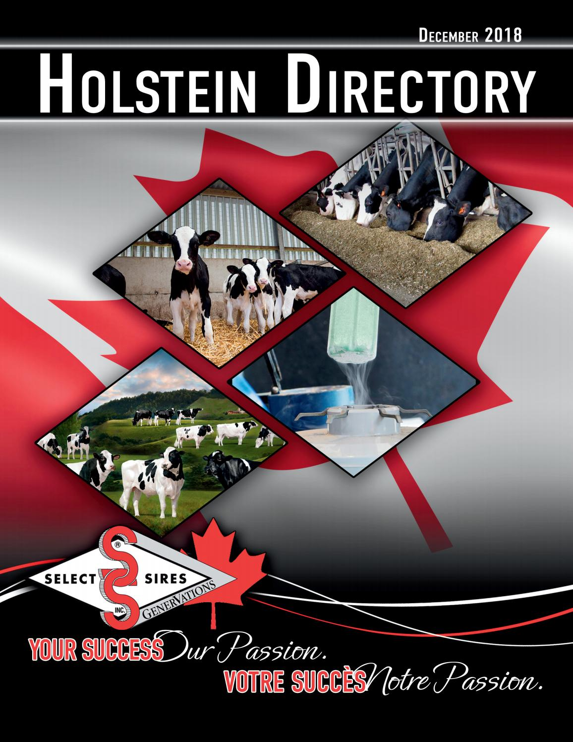 Plester Mr P December 2018 Select Sires Genervations Holstein By Select Sires