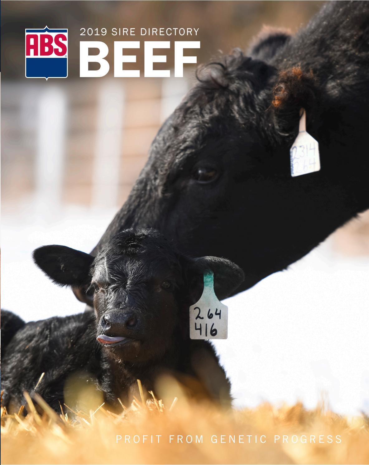 Early Dew 3031 2019 Us Beef Sire Directory By Abs Global Inc Issuu