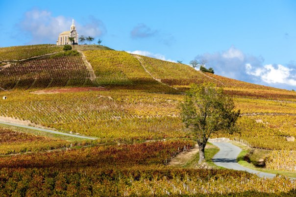 Rhone Valley - Beaujolais vineyards France - Best wine destinations in Europe