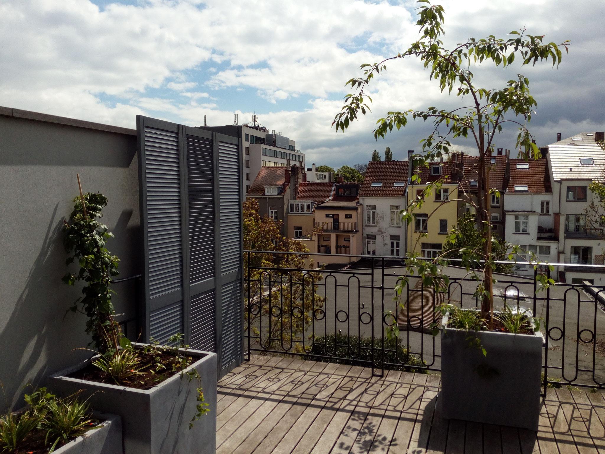 Aménagement Terrasse De 30m2 | Aménagement D 39un Jardin Privé Pièce ...