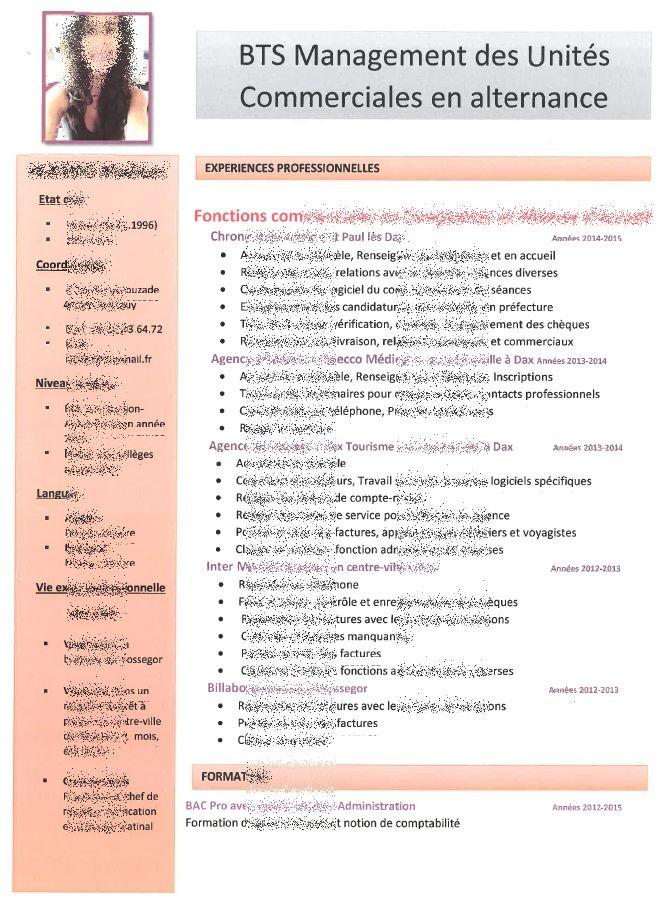 cv pour formation bts assurance