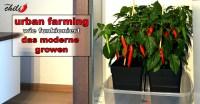 Growbox Komplettset Led: Generic growbox komplettset pro w ...