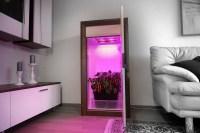 Warum ein LED Growbox Komplettset kaufen? - Growbox ...