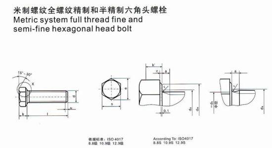 China Metric System Full Thread Fine and Semi-Fine Hexagonal Head