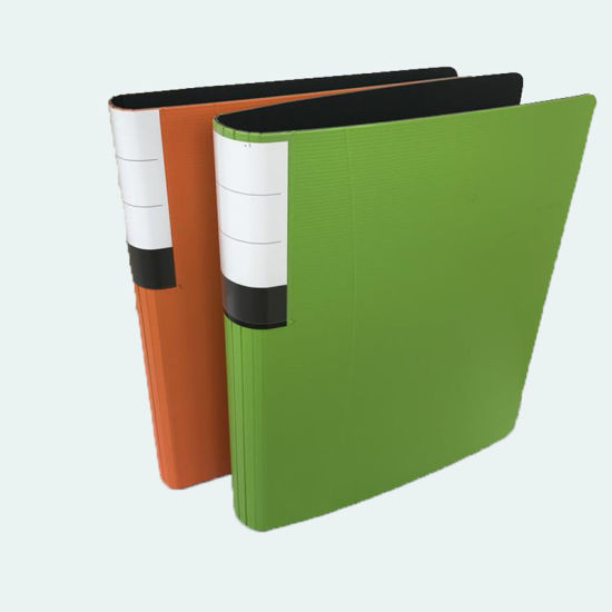 China Paper Board 3 Ring Binders PP Foam File Folders - China Office