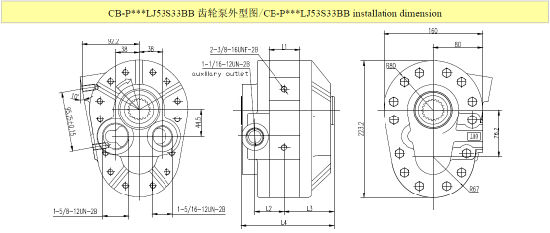 China Pto Hydraulic Gear Oil Pump for Dump Truck - China Pump, Gear Pump
