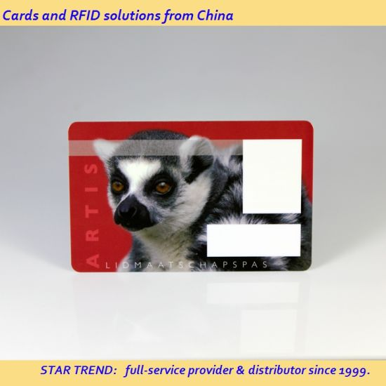 China Re-Printable Customized Size and Logo Plastic Loyalty Card for