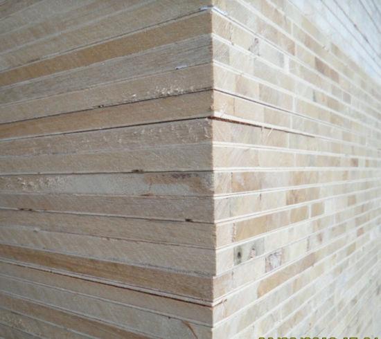 China Commercial Blockboard for Furniture (Poplar, Pine, Paulownia