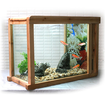 All Glass Aquarium Fish Tank | Aquatic Gardens