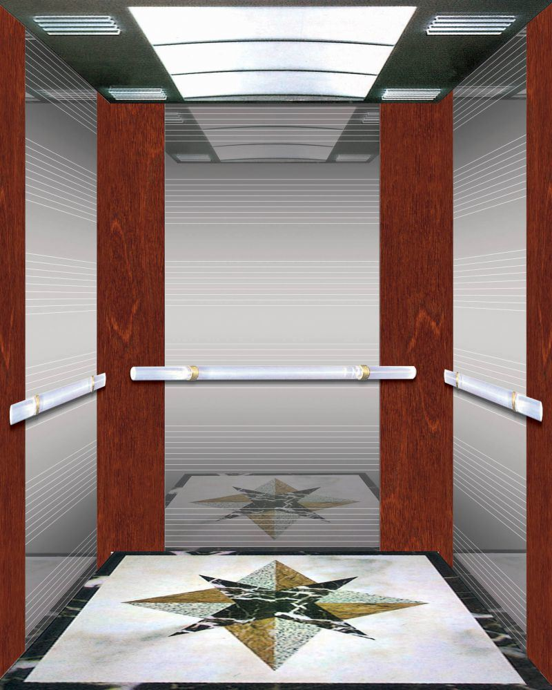 Dsk Doors Hot Item Safe Dsk Passenger Elevator With Economic Price And Best Quality