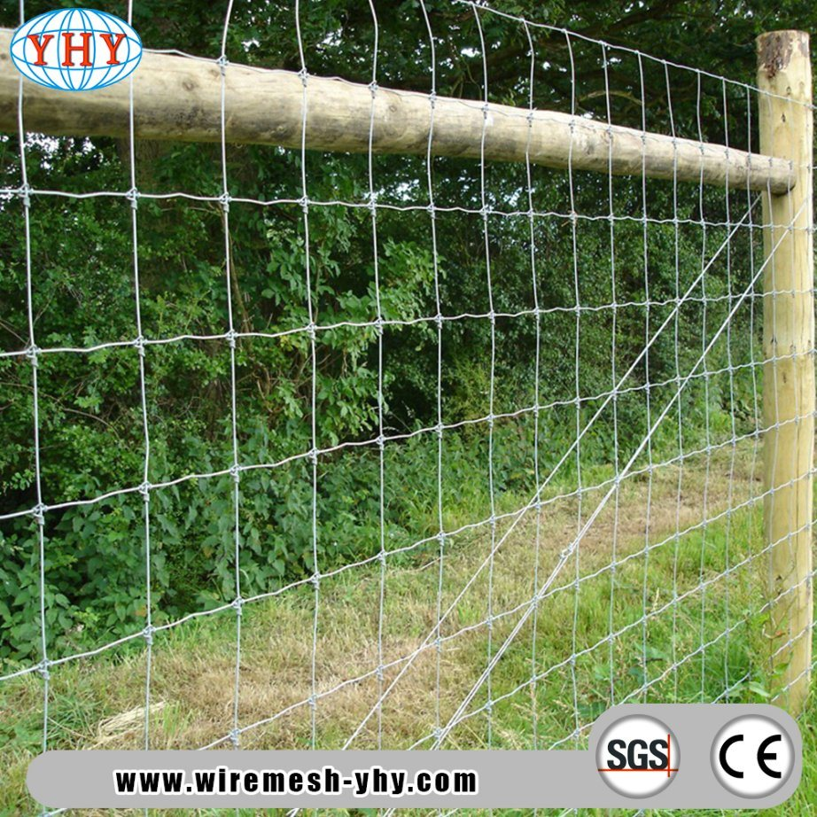 Wire Fencing China Field Wire Fence Mesh Field Wire Fence Mesh Manufacturers Suppliers Price Made In China