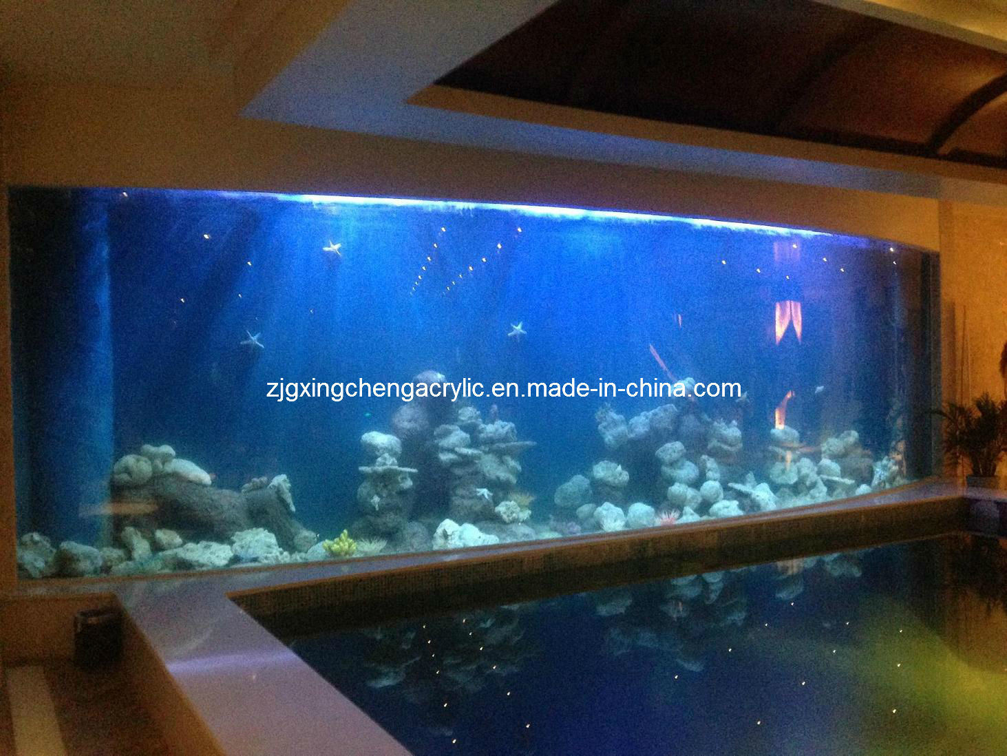 Acrylglas Aquarium China Transparent Acrylic Aquarium Plexiglass Fish Tank