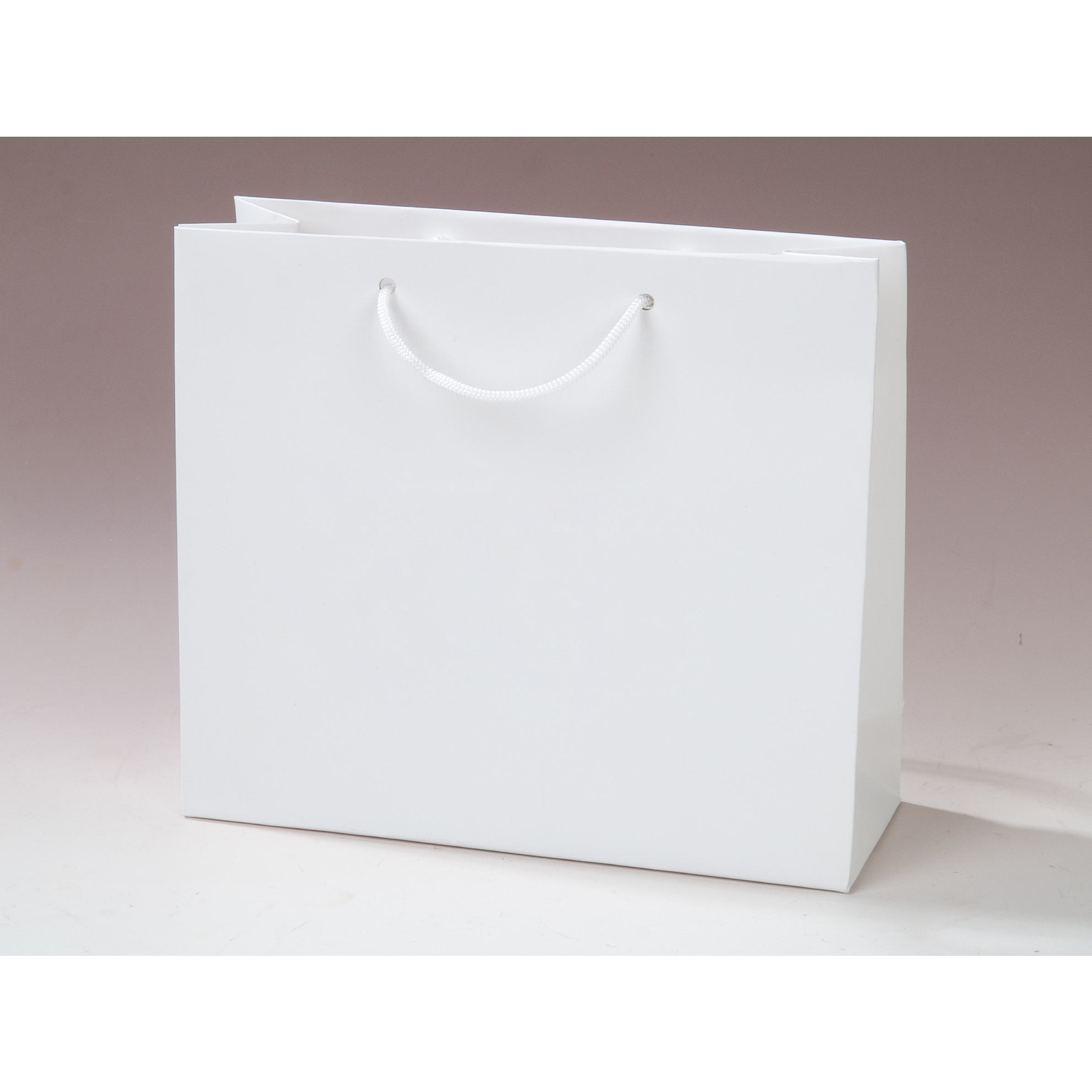 Paper Gift Bags White Paper Shopping Bags With Handles Bags More