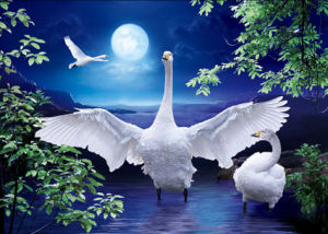 3d Effect Live Wallpapers China High Resolution Beautiful Scenery 3d Nature Picture