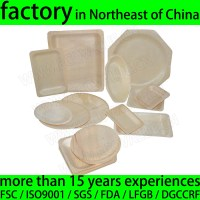 China Round Wooden Disposable Plates, Disposable Wood ...