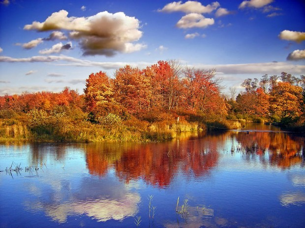 Fall In Central Park Wallpaper Poconos Guide Where To Stay What To Do During Your Fall
