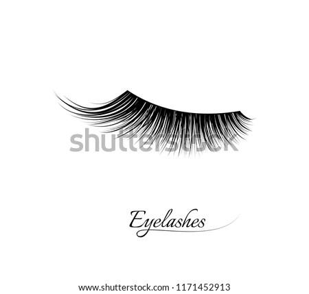 Eyelash Free Brushes - (13 Free Downloads)