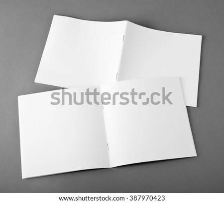 Blank brochure on grey background EZ Canvas