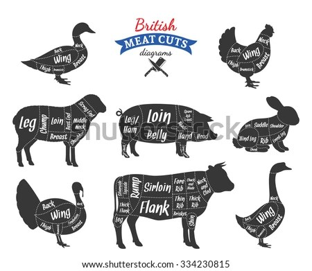 Lamb Meat Cuts Chart Awesome To Order Custom Sides Of Beef Pork Or