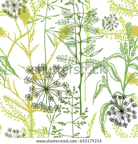 Herbal vector seamless pattern Floral background with wild summer