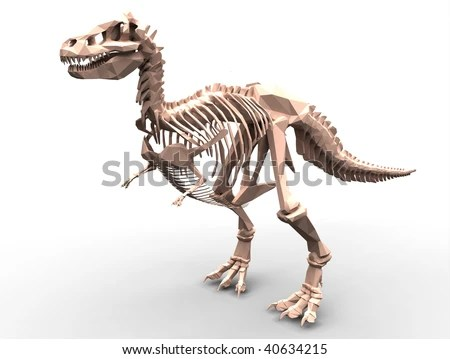 Adventure Time Image Tyrannosaurus Rex Jpg 9 Tyrannosaurus Rex Trex Skeleton Isolated On White Stock Photo x
