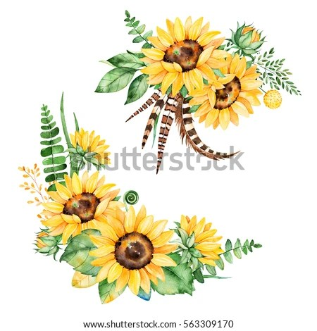 Royalty Free Stock Illustration of Beautiful Floral Collection