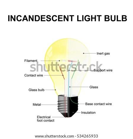 Diagram Showing Parts Modern Incandescent Light Stock Illustration