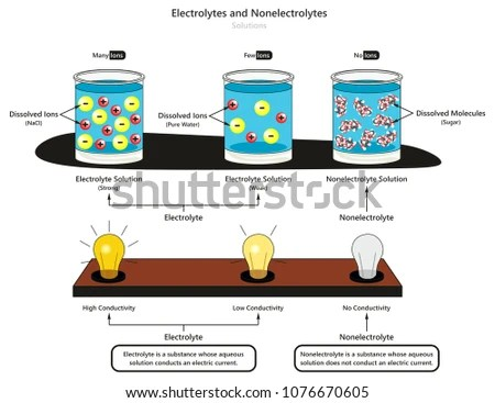 Diagram For Electrolytes - Just Wiring Data