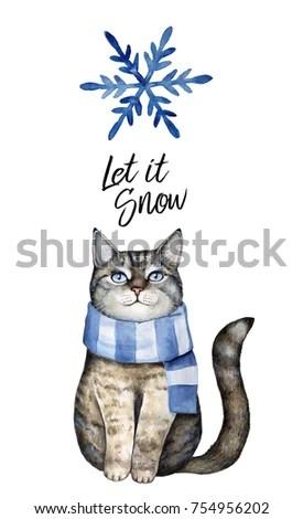 Grey Cat Dressed Blue Winter Scarf Stock Illustration 754956202