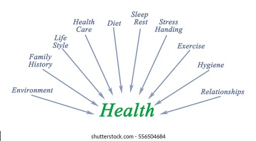 Health Components Stock Illustration - Royalty Free Stock