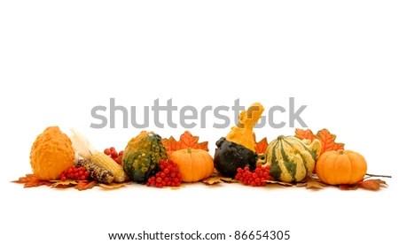 Autumn Horizontal Edge Border Various Harvest Stock Photo (Edit Now