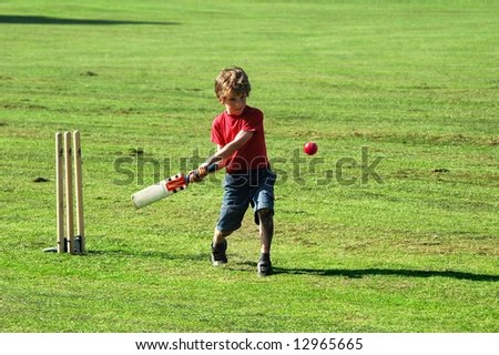 Boy Playing Cricket Stock Photo (Edit Now) 12965665 - Shutterstock