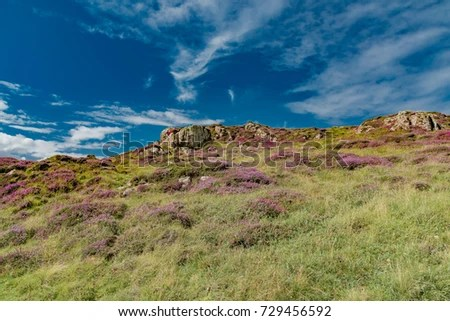 Colorful Nature Scotland Isle Skye England Stock Photo (Edit Now