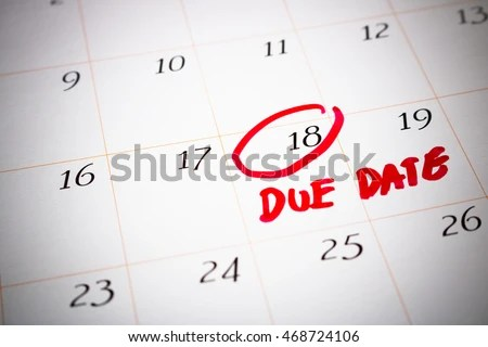 pregnancy calendar due date day by day - Nisatasj-plus