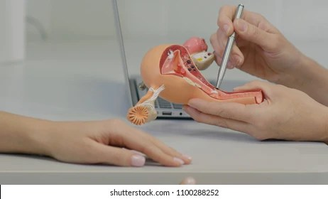 hysterectomy Images, Stock Photos  Vectors Shutterstock