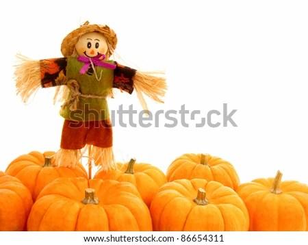 Harvest Border Pumpkins Scarecrow Over White Stock Photo (Edit Now