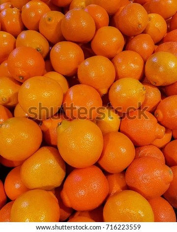 Minneola Tangelo Oranges Pile Shop Sale Stock Photo (Edit Now