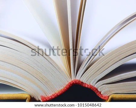 Open Book Closeup Books Pages Stock Photo (Edit Now) 1015048642