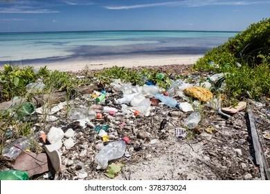 Marine Life Plastic Images Stock Photos Vectors